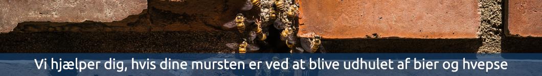 Bekæmpelse af bier og hvepse