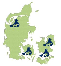 Skadedyrbekæmpelse i Danmark
